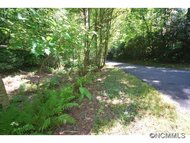 Lot 20 Sequoyah Woods Road Brevard NC, 28712