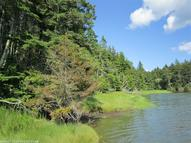 Lot 25 Flye Point Road Brooklin ME, 04616