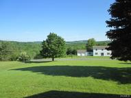 469 White Sulphur Road Swan Lake NY, 12783