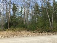 Piper Road Lot 20 Ossineke MI, 49766