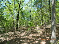 9.14 Acres Off Cr 3020 Coal Hill AR, 72832