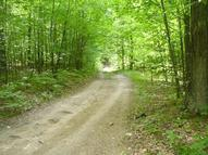 Maple Hill Drive 5.28 Acres Fairview MI, 48621