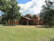 893 Old Ranch Road Florissant CO, 80816