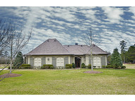 30732 Bluewing Crescent Other Springfield LA, 70462