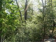 Lot 23a Falls View Trail Lake Lure NC, 28746
