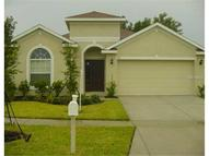 1151 Emerald Hill Way Valrico FL, 33594