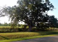 Lot 16 Post Oak Run Magnolia TX, 77355