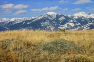 Lot 22 Kestrel Ridge Road Emigrant MT, 59027