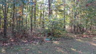 Lot 10 Valley View Road Rogersville MO, 65742