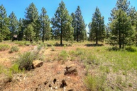 60255 Lot 42 Sunset View Drive Bend OR, 97702