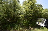 Tract 2 Bayview Drive Mead OK, 73449