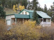 453 Willow Road Divide CO, 80814
