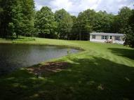 240 Kienitz Road Mc Donough NY, 13801