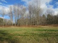 4 Soaring Ridge Way Big Flats NY, 14814