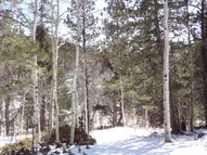 3168 N. Mountain Estates Road Florissant CO, 80816