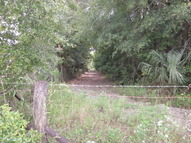 78.93 Acres Nw 50th Ave/Nw 42nd Trl Bell FL, 32619
