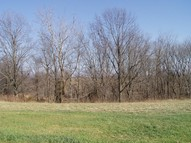 Lot 4 Old Cape Rd Jonesboro IL, 62952