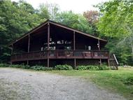 12 Bromley Forest Road Winhall VT, 05340