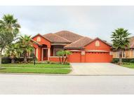 8312 Windsor Bluff Dr Tampa FL, 33647