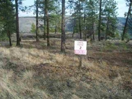 Lot 2 Viewridge Davenport WA, 99122