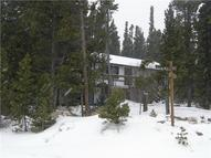767 Silver Creek Road Idaho Springs CO, 80452