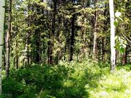 Lot 13 North Forest Star Valley Ranch WY, 83127