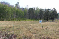 Lot 7 Greer Mountain Subdivision -- Greer AZ, 85927