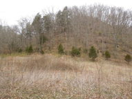 141.55 Ac. South Fork Rd Whitleyville TN, 38588