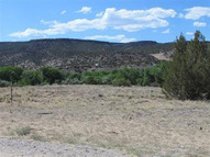 1ac Arriba Vineyard Drive Alcalde NM, 87511