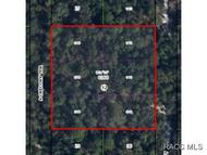 3687 S Chicory Ter Inverness FL, 34450