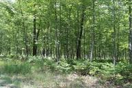 Miller Road 30 Acres Parcel M Lincoln MI, 48742