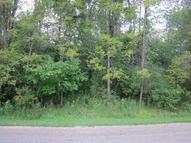 Lot 37 Deer Park Subd. #3 Port Hope MI, 48468