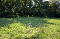 Lot 11 Riverview Dr Milton KY, 40045