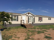 3215 S County Rd 1068 Midland TX, 79706