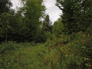 Lot 4 A Deerwood Hill Londonderry VT, 05148