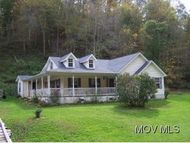 141 Canoe Run Looneyville WV, 25259