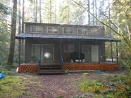 152 North Woods Cabin Cougar WA, 98616