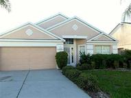 10633 Walker Vista Drive Riverview FL, 33578