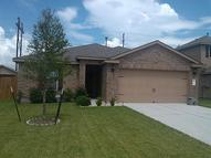16135 Green Plume Ln Hockley TX, 77447