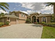 9813 Tree Tops Lake Road Tampa FL, 33626