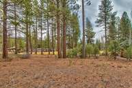 138 Black Bear Trail Clio CA, 96106