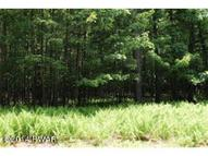 Lot 145 Pleasant Mountain Dr Tafton PA, 18464