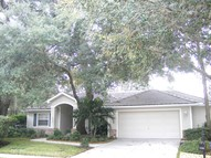 1560 Jutland Drive New Port Richey FL, 34655