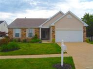 354 Birchwood Crossing Lane Maryland Heights MO, 63043