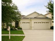 10502 Sky Flower Ct Land O Lakes FL, 34638