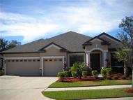 20009 Outpost Point Drive Tampa FL, 33647