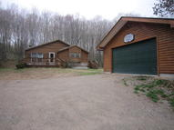 13584 Winding Woods Run Newberry MI, 49868