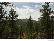 29542 High Road Pine CO, 80470