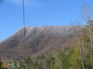 0 Bridge Creek Rd Tr 1 Tiger GA, 30576