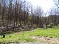 Lot 29 Stonecrest Drive Grafton WV, 26354